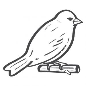 (c) 1finch.org.uk